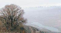 Река Чирчик ранней весной