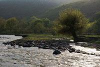 Шавазсай - приток Ахангарана